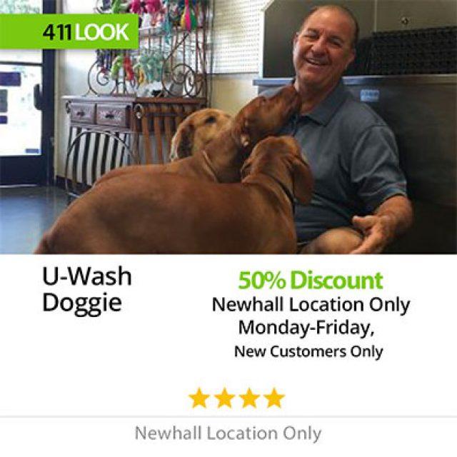 U Wash Doggie